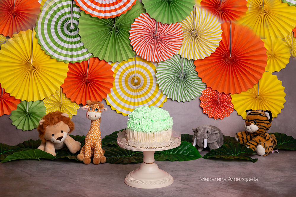 Nuevas decoraciones para smash cake!!